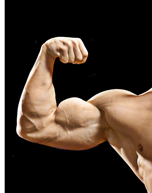 Three Surprising Ways To Raise Testosterone for A Better Body & Life